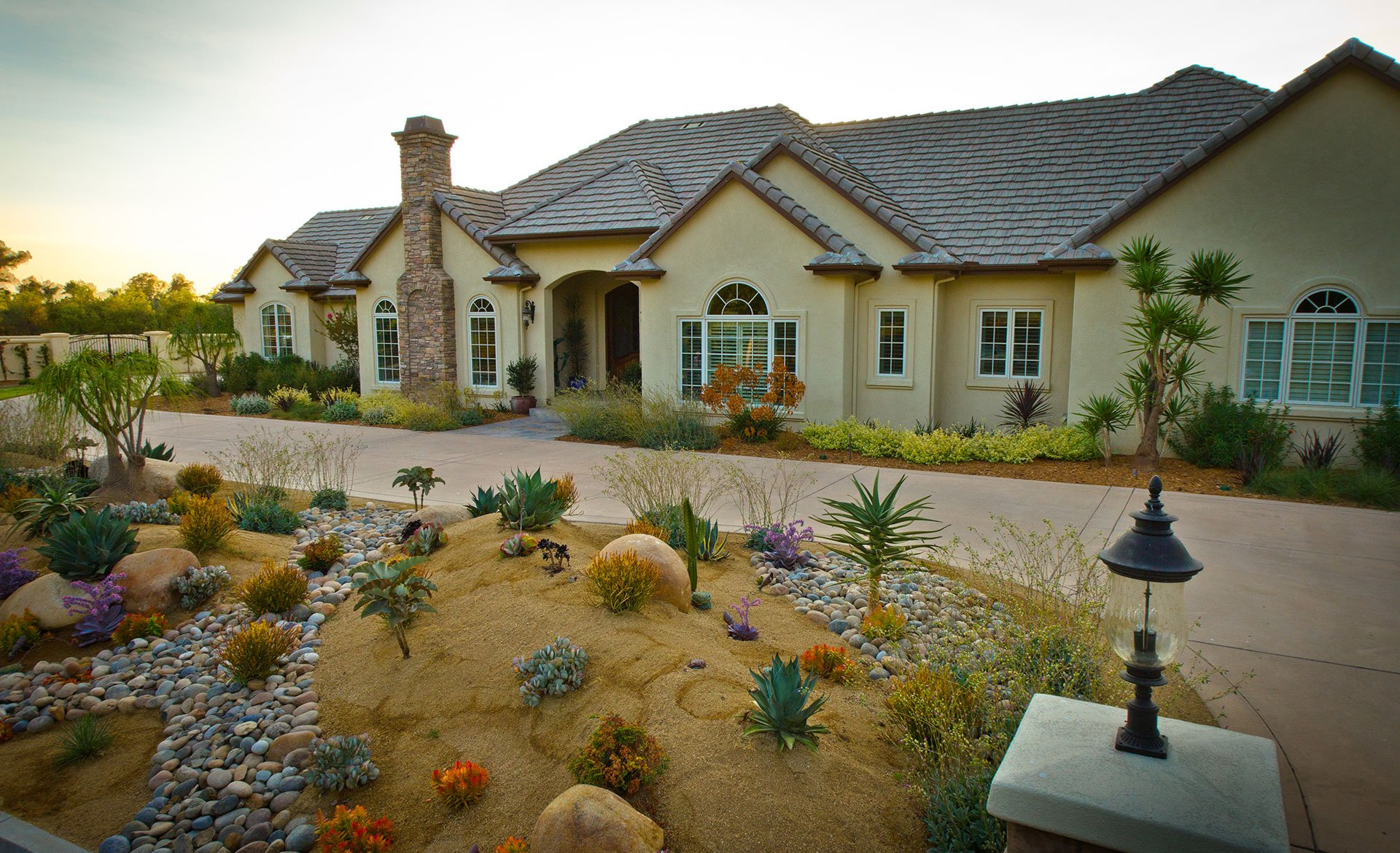 Desert landscaping can create curb appeal with popular plants